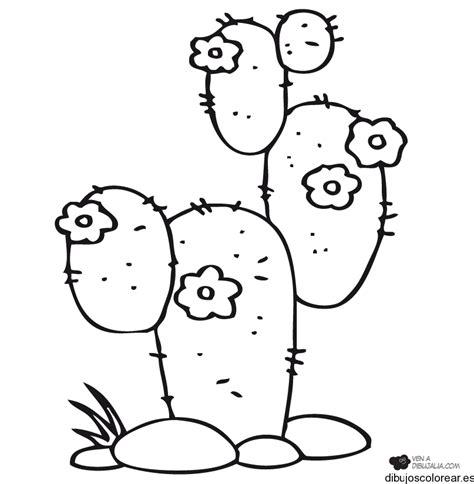 dibujo de cactus con sombrero para colorear dibujo de cactus con sombrero para colorear cactus con