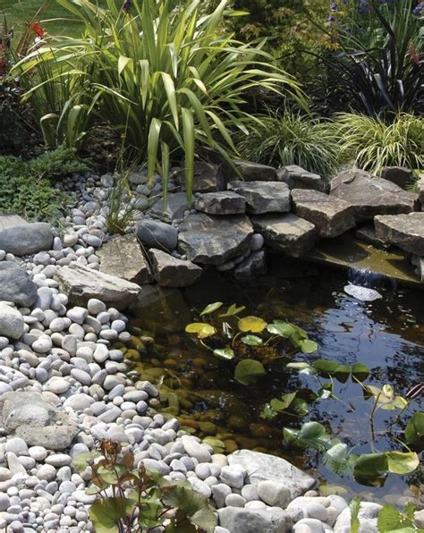 best 25 small ponds ideas on small garden