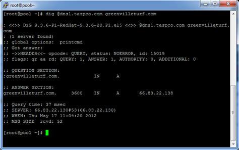 check dns records   specific dns server