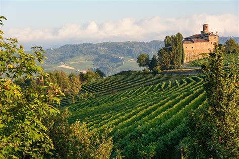 Winery Visit In Torino Piedmont Italy Food And Wine