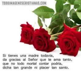 imagenes de rosas rojas para una madre una rosa para mi madre en el cielo apexwallpapers com