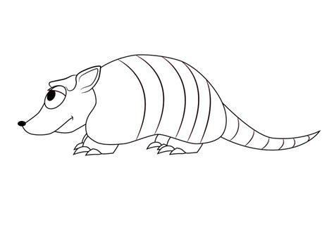 armadillo coloring page printable coloring pages