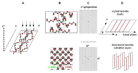 pattern formation in diffusion limited crystal growth ijms free full text structure formation of ultrathin