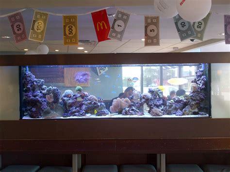 aquarium design delhi aquarium design and installation aquarium effects aquarium
