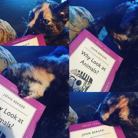 el olvido que seremos oblivion a memoir edition books verso