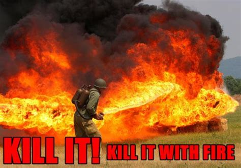 Fire Meme - image 128622 kill it with fire know your meme