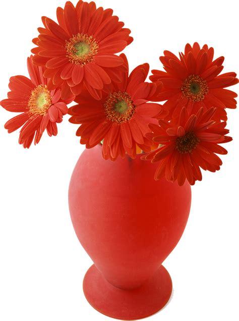 imagenes en png para renders marcos gratis para fotos flores png ramos etc renders