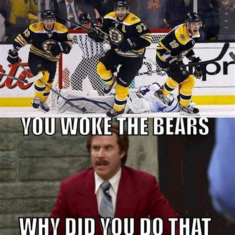 Bruins Memes - boston bruins dontpokethebear btw the facial