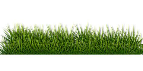 gambar rumput format png พ นหล งส เข ยว กราฟฟ กเวคเตอร บน pixabay