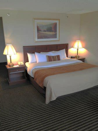 comfort inn utica mi comfort inn utica 61 9 1 updated 2018 prices