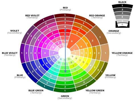 colour compliments color combinations for interiors housz