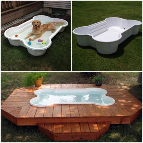 provide dogs access to water backyard ideas for dogs love your dog with pet friendly garden design patiopads