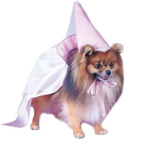 pomeranian costume princess pomeranian pet costume with pink hat and cape stuff juxtapost