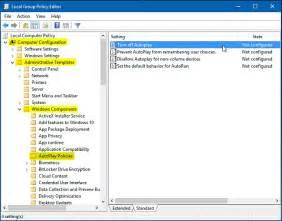 Templates gt windows components click autoplay policies