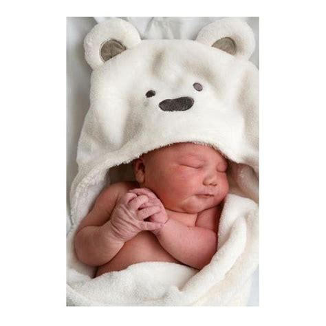 polar bear baby clothes – Baby grizzly bear vs. teddy bear    The Meta Picture