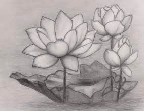 Lotus Flower Sculpture Japanese Lotus Flower Drawing Search 2