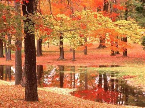 wallpapers blog autumn scene