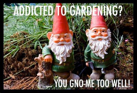 garden humor  images  pinterest funny stuff