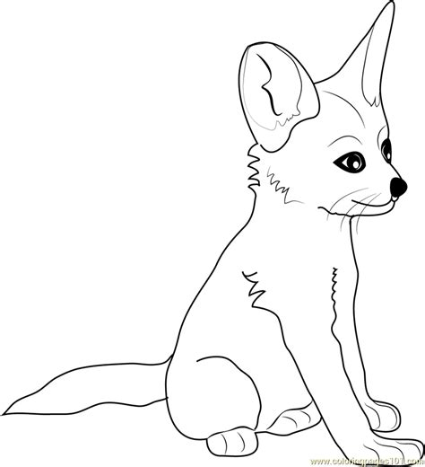 fennec fox baby coloring page free fox coloring pages