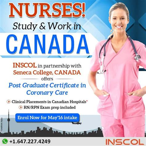 nursing courses in toronto 187 best images about nursing courses canada on