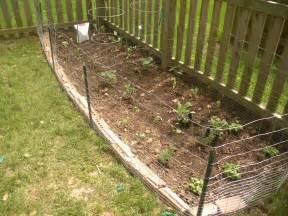 Ideas For Garden Fencing Vegetable Garden Fence Ideas Interior Exterior Doors