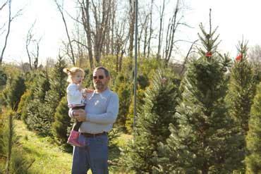 baker s christmas tree farm kentucky christmas tree