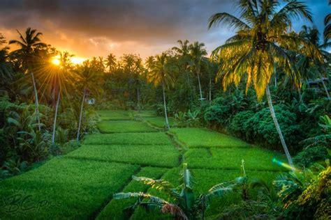 gambar gambar pemandangan alam indah pemandangan
