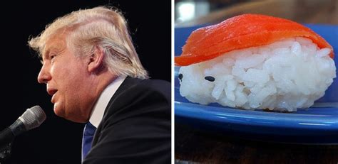donald trump looks like 21 things that look exactly like donald trump