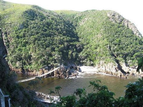 Garden Route National Park by Suspension Bridge Picture Of Garden Route Tsitsikamma