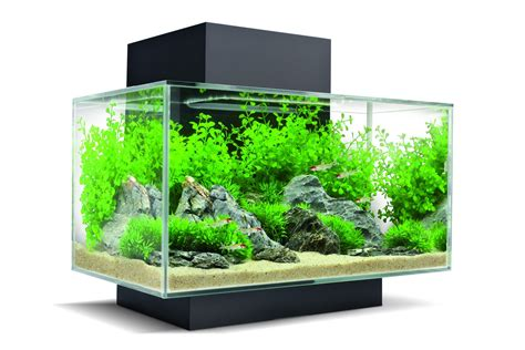 vasche acquari mobili per acquari design casa creativa e mobili ispiratori