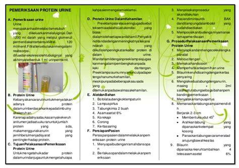 2 protein in urine leaflat pemeriksaan protein urine reguler 2