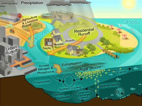 runoff diagram colour in the coastal zone