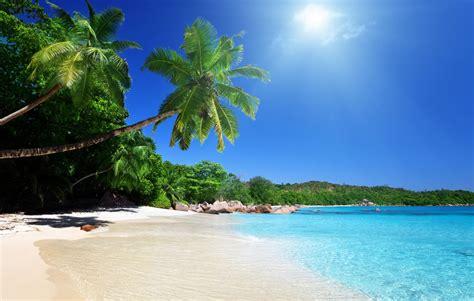 imagenes de venezuela playas los 10 lugares m 225 s bonitos de venezuela el n 243 mada