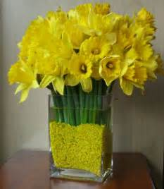 Ideas For Daffodil Varieties Design Orchids Daffodils Moss Pins