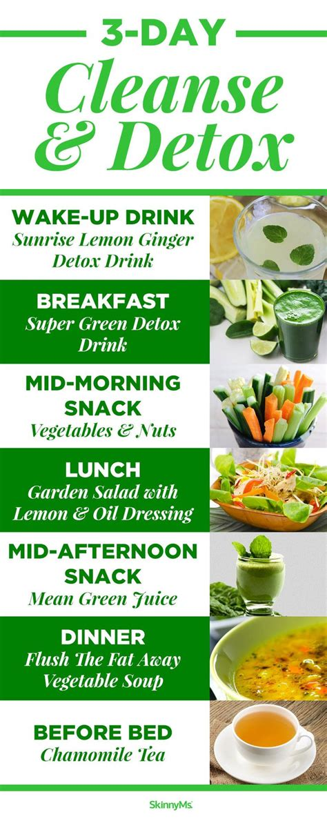3 Day Cleanse Detox Diy by 25 B 228 Sta Detoxdieter Id 233 Erna P 229 Juicerening