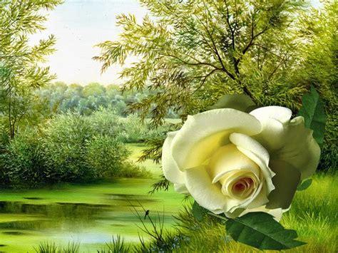 imagenes bellas brillantes en movimiento imagenes de rosas amarillas con movimiento