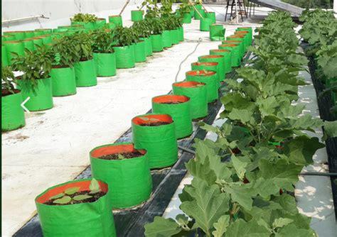 coimbatore hdpe vegetables grow bags maadi thottam
