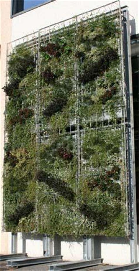 parete giardino verticale pareti come giardini verticali