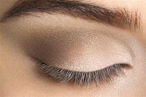 Light Eyeshadow basics smokey tutorial the makeup culture