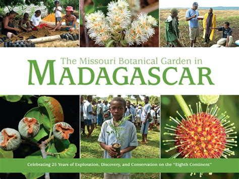 seed from madagascar books madagascar