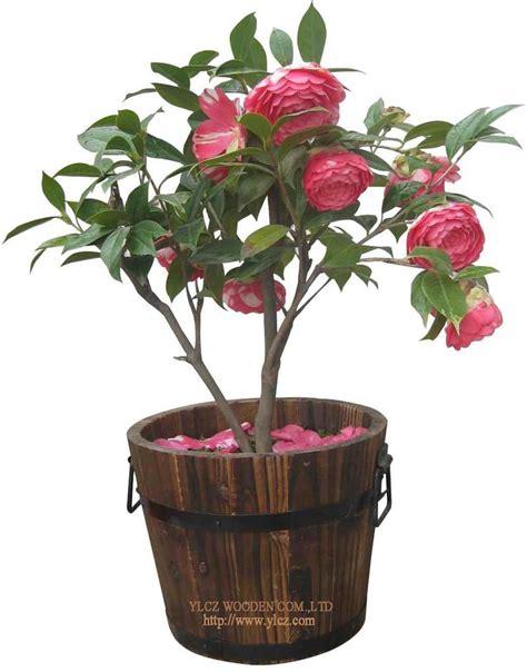 Garden In A Flower Pot China Garden Decoration Flower Pot Gh8008a China Outdoor Furniture Garden Decoration