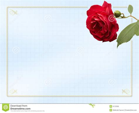 rose card stock photo image 5172330