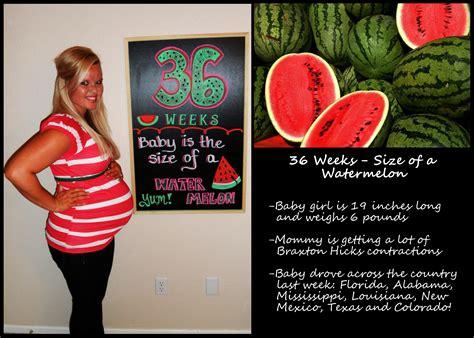 fruit 36 weeks bump report 36 weeks skier runner