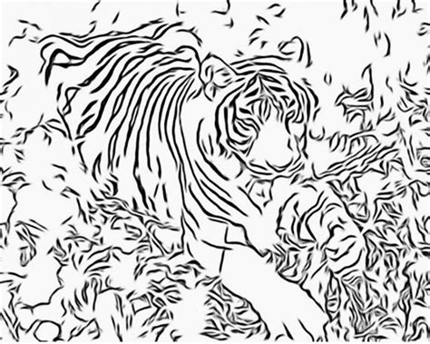 clemson tiger coloring page clemson free coloring pages