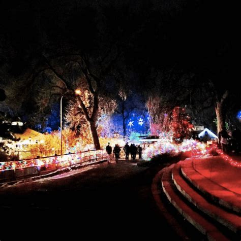 What To Do With Kids In Denver This New Years 2016 2017 Denver Zoo Lights Tickets