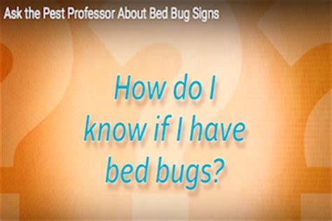 how can i tell if i have bed bugs how can i tell if i have bed bugs ask the pest professor