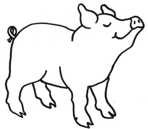 imagenes de animales omnivoros para colorear cerdo para colorear 2 gif animales omnivoros