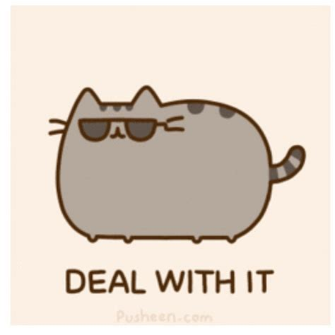 Pusheen Cat Meme - pusheen pusheen cat cute lovely meme dealwithit