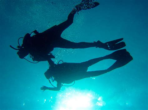 dive cozumel diving in cozumel