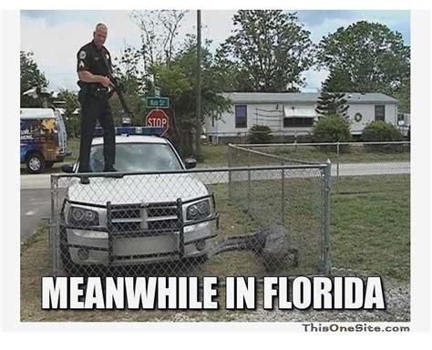 Funny Florida Memes - 15 best florida man images on pinterest